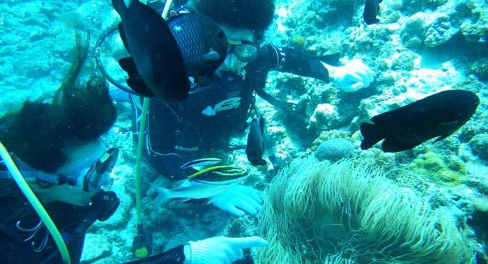 初めての沖縄旅行2日目!旅行の1番の思い出になった!水納島での初ダイビング!
