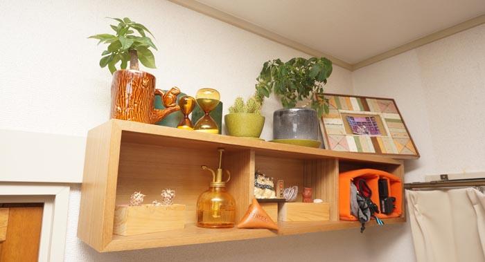 壁に付けられる家具。に観葉植物置いてみた。