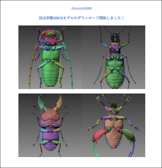 140326_Insecta_01