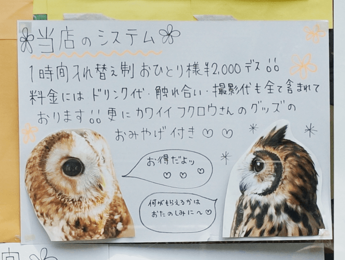 140721_fukuroucafe_02
