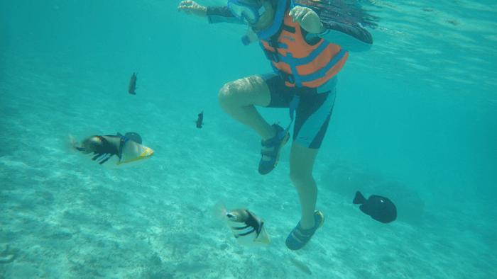 青い海しかない離島!沖縄 ナガンヌ島へ行って来ました!