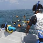 沖縄旅行2015 2日目 みんな島でシュノーケルをして、美ら海水族館へ行きました!