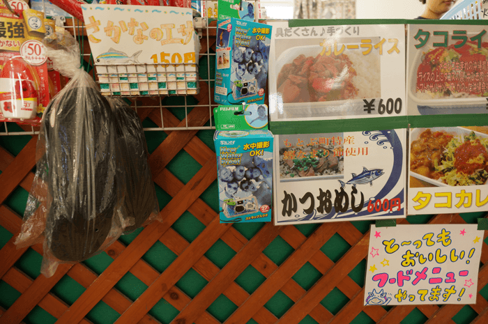 151003_okinawa_minnasima_20