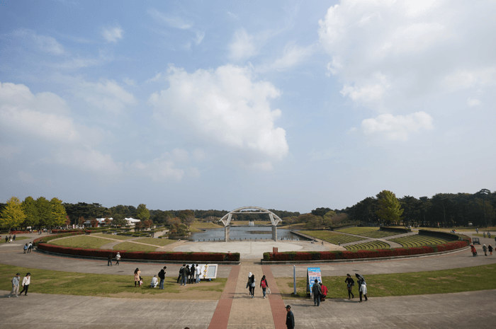 151111_kosumosu_01