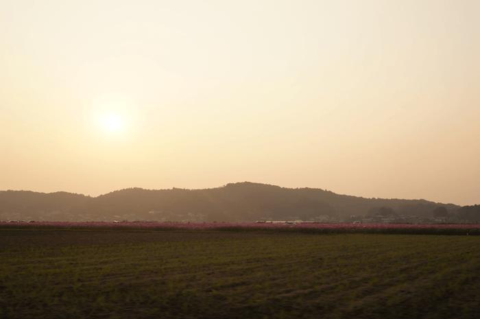 151111_kosumosu_21