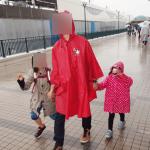 雨の日ディズニーはポンチョを着ると楽でした。感想