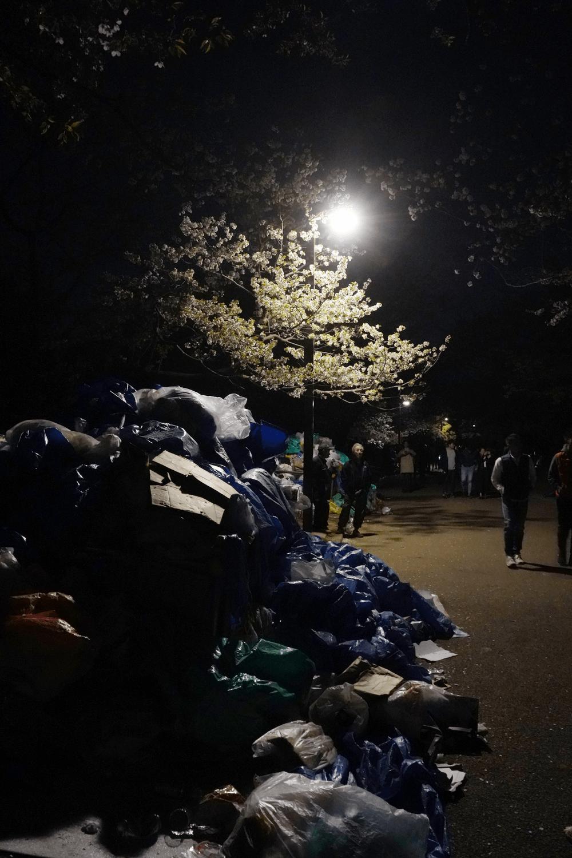 α7Ⅲで代々木公園の夜桜撮影してきました。