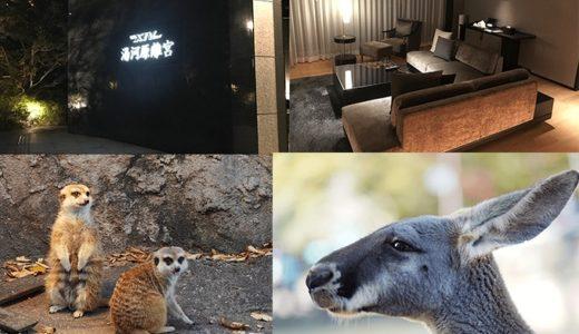 小田急ロマンスカーで富士サファリパークへ行ってXIVに泊まってきました