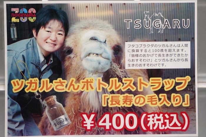 130408_zoo_32.jpg