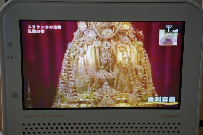 130502_motihakobi_06.jpg